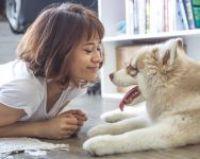 Jak domácí mazlíčci ovlivňují naše zdraví