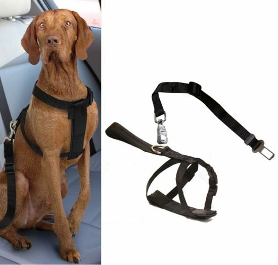 Obrázek z Postroj pro psa do auta Croci L 70-90 cm