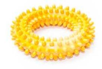 Obrázek Kruh TG s ostny malý vonící 10cm-12511