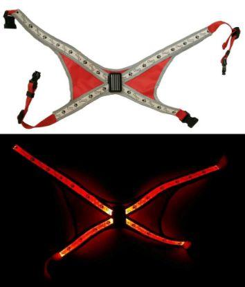 Obrázek Svítící LED postroje-S-40x60cm-ČERVENÁ-13395