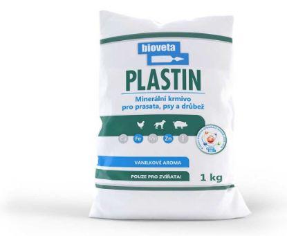 Obrázek PLASTIN    1kg-sypký-2819