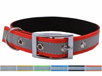 Obrázek Obojek Popruh P25XGJ-25x45-55cm-barevný-REFLEXNÍ-16227