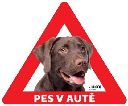 Obrázek Samolepka pes v autě venkovní - labrador hnědý
