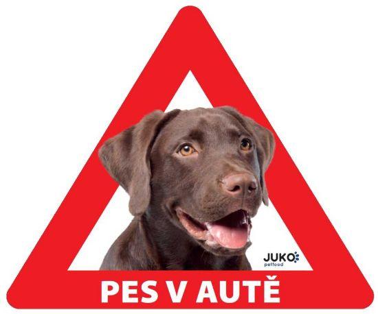 Obrázek z Samolepka pes v autě vnitřní - labrador hnědý