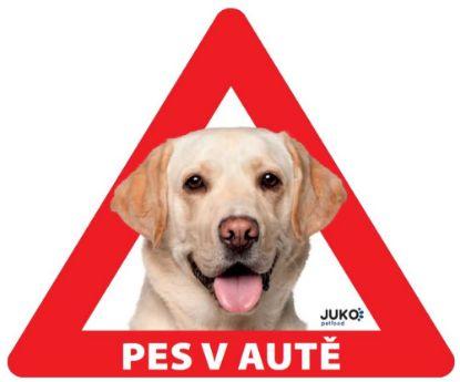 Obrázek samolepka-Pes v autě venkovní  - LABRADOR žlutý-13635