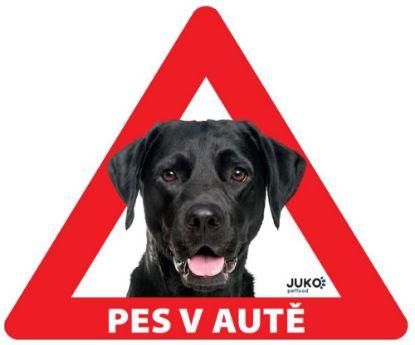 Obrázek Samolepka pes v autě venkovní - labrador černý