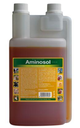 Obrázek Tekutý-AMINOSOL   30ml-2467-OBJ