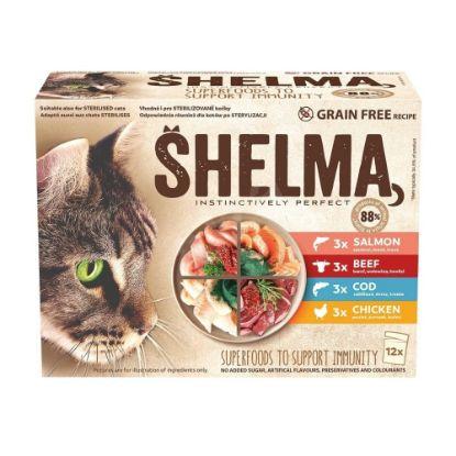 Obrázek SHELMA Cat kuřecí, hovězí, losos a treska, kapsa 85 g (12 ks)
